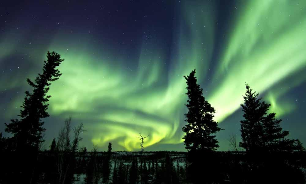 Aurora Borealis (Northern (Polar) Lights) over the boreal forest Yellowknife, Northwest Territories, Canada.