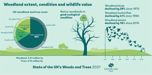 Infographic showing the benefits of woodlands