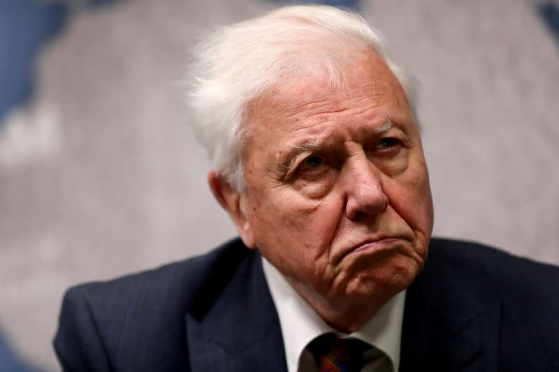 David Attenborough in appeal to save charity behind London Zoo