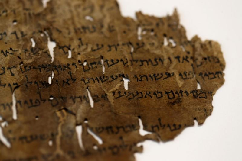 Hides that reveal: DNA helps scholars divine Dead Sea Scrolls