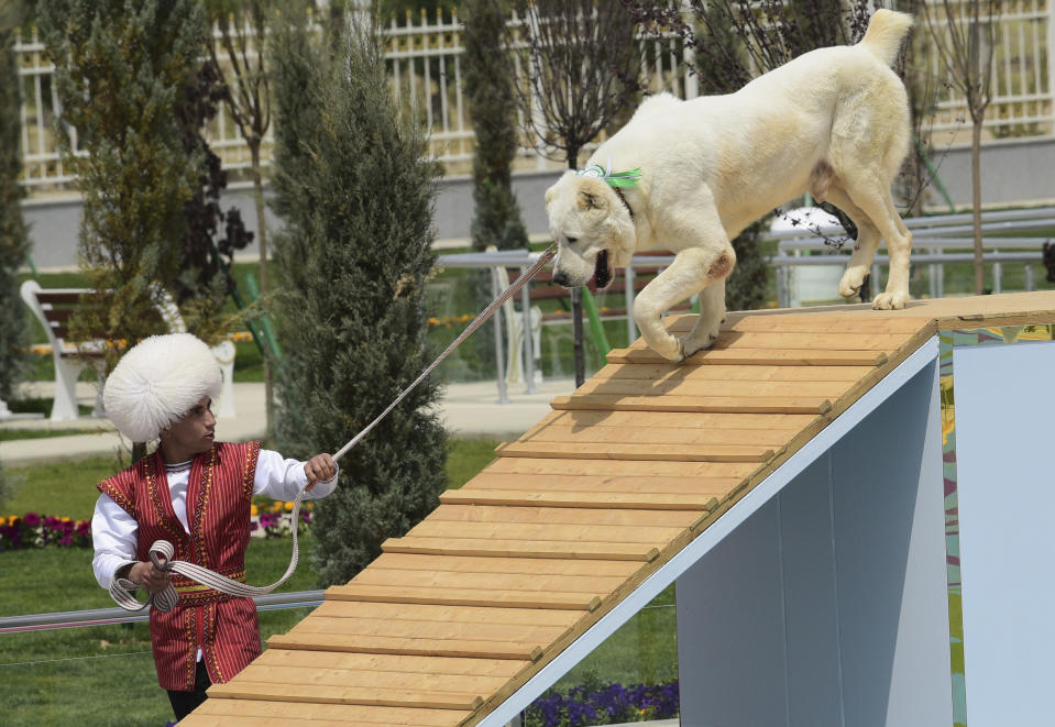 A man dressed in a national costume performs with his border guard shepherd dog Alabay during Dog Day celebration in Ashgabat, Turkmenistan, Sunday, April 25, 2021. The Central Asian nation of Turkmenistan has celebrated its new state holiday honoring the native Alabay dog breed. President Gurbanguly Berdymukhamedov established the holiday to be observed on the same day that Turkmenistan lauds its Akhla-Teke horse, a breed known for its speed and endurance. (AP Photo)