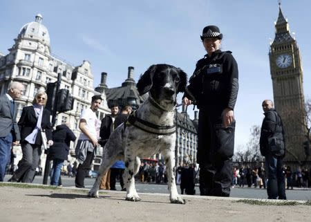 A police dog handler patrols in Parliament Square following the attack in Westminster earlier in the week, in central London
