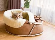"""<p>Recognizing that cats love to nap in all sorts of odd places, designer Leeling Ho humorously indulged her pet cat Jojo's shoe-obsession with her signature product—the Moccasin Pet Bed. It's designed as an oversized slipper to curl up in, made of soft sherpa fleece and faux suede.</p> <p><strong><em>Shop Now: </em></strong><em>Napping Jojo Sherpa Moccasin Shoe Cat Bed, in Mocha</em><em>, $92, </em><a href=""""https://nappingjojo.com/products/moccasin-pet-bed"""" rel=""""nofollow noopener"""" target=""""_blank"""" data-ylk=""""slk:nappingjojo.com"""" class=""""link rapid-noclick-resp""""><em>nappingjojo.com</em></a><em>.</em></p>"""