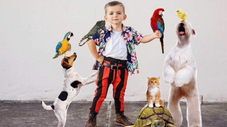 A miniature version of Ace Ventura is officially on the case.