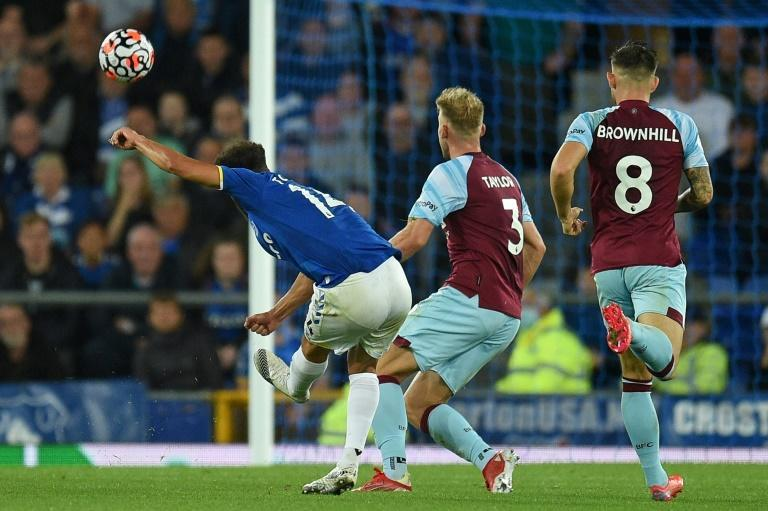 Wonder strike: Andros Townsend (left) put Everton in front (AFP/Oli SCARFF)