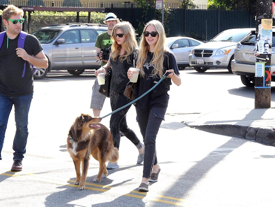 ©2010 RAMEY PHOTO Los Angeles, October 7th 2010 AMANDA SEYFRIED OUT IN LA WITH HER DOG. GV (Photo by Philip Ramey/Corbis via Getty Images)