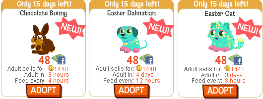 Easter Pets in Happy Pets