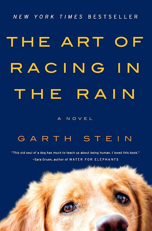 "<p>See life through the eyes of Enzo the dog in <strong><product href=""https://www.amazon.com/Art-Racing-Rain-Tie-Novel-dp-006236491X/dp/006236491X/ref=mt_other?_encoding=UTF8&amp;me=&amp;qid="" target=""_blank"" class=""ga-track"" data-ga-category=""Related"" data-ga-label=""https://www.amazon.com/Art-Racing-Rain-Tie-Novel-dp-006236491X/dp/006236491X/ref=mt_other?_encoding=UTF8&amp;me=&amp;qid="" data-ga-action=""In-Line Links"">The Art of Racing in the Rain</product></strong>. This beautiful-yet-heartbreaking story offers hope to those mending broken hearts and gives readers a reminder of how powerful a great love is. </p>"