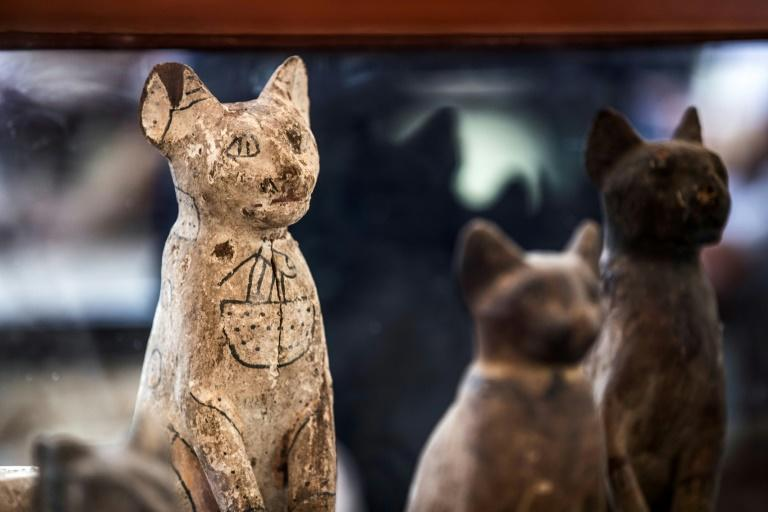 Statues of cats found in the dig unveiled at Saqqara by Egypt's antiquities ministry on November 23, 2019
