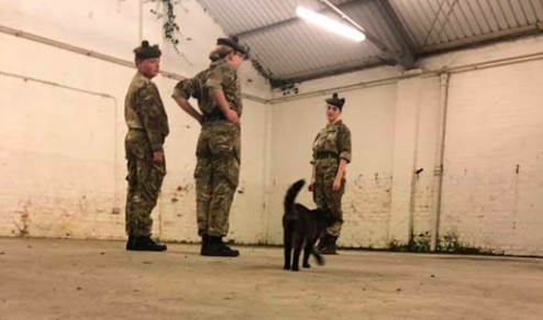 Standing fur attention: Inspecting the local barracks. (Facebook)