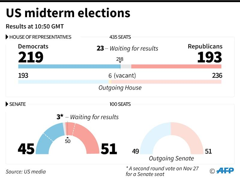 Results of the US midterm elections (AFP Photo/Sabrina BLANCHARD)