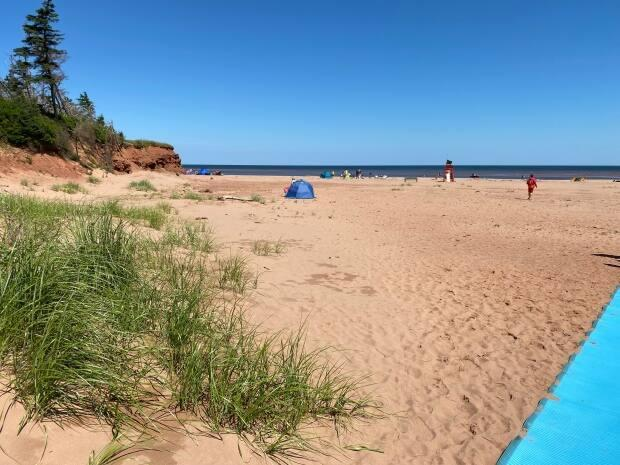 Cabot Beach had been closed to swimmers since last summer.  (Kirk Pennell/CBC - image credit)