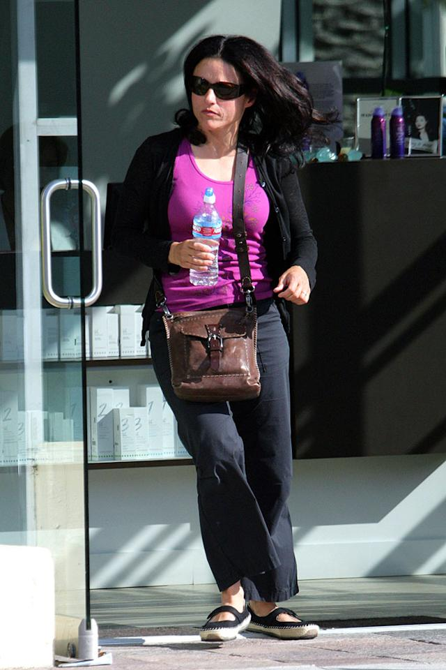 "Former ""Seinfeld"" star Julia Louis-Dreyfus leaves Studio DNA, a friendly salon in Santa Monica known for its complimentary scalp treatments and affordable prices. Ginsburg-Splay/<a href=""http://www.x17online.com"" target=""new"">X17 Online</a> - April 25, 2008"