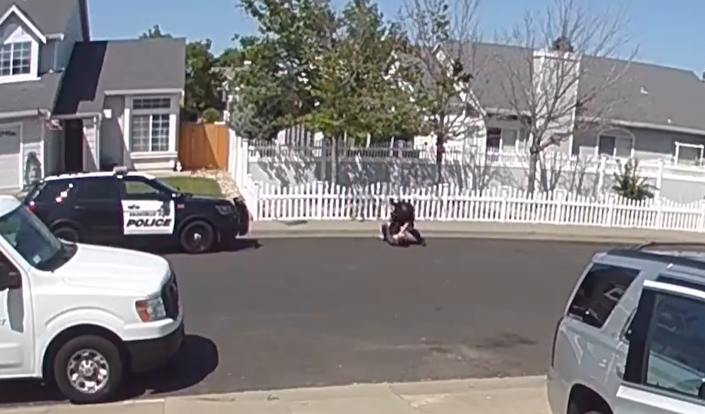 Vacaville Police Department officer punches autistic teenager (Facebook @AdamWolf)