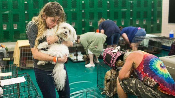 PHOTO: Samantha Belk says goodbye to her maltese, Gardolf until after the hurricane in a locker room at John Hopkins Middle School on Sunday, Sept. 10, 2017, in St. Petersburg, Fla. (Eve Edelheit/Tampa Bay Times via AP)