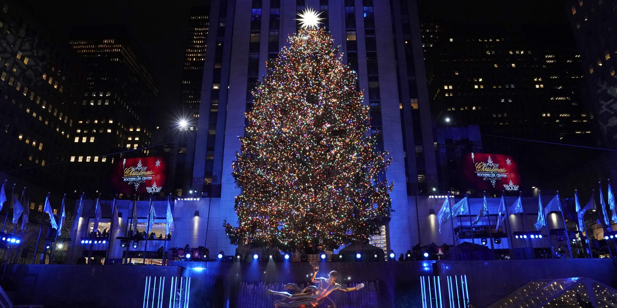 the 2020 rockefeller center christmas tree has been chosen here are the details https news yahoo com 2020 rockefeller center christmas tree 141700755 html