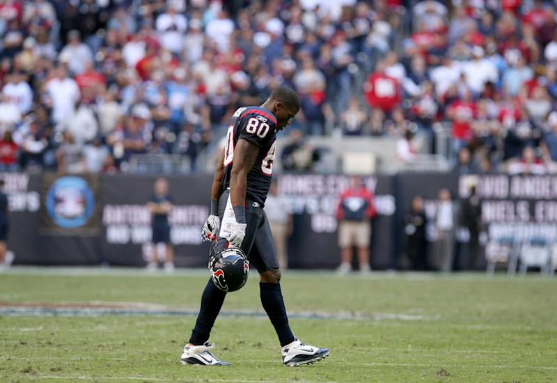 Houston Texans wide receiver Andre Johnson (80)