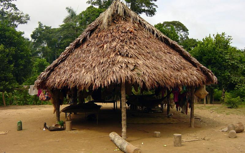 A dwelling of the Tsimane - Credit: Michael Gurven/ AP