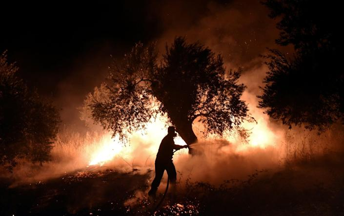 Fires linked to environmental changes caused by global warming have been raging through Greece and parts of Europe - REUTERS