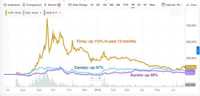 Pot stocks over the past 12 months (Yahoo Finance)