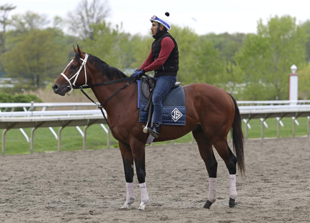 Maximum Security, with exercise rider Edelberto Rivas aboard, stands on the track at Monmouth Park in Oceanport, N.J., on Thursday morning, May 9, 2019, before working out on the track for the first time since the Kentucky Derby. (Bill Denver/EQUI-PHOTO via AP)