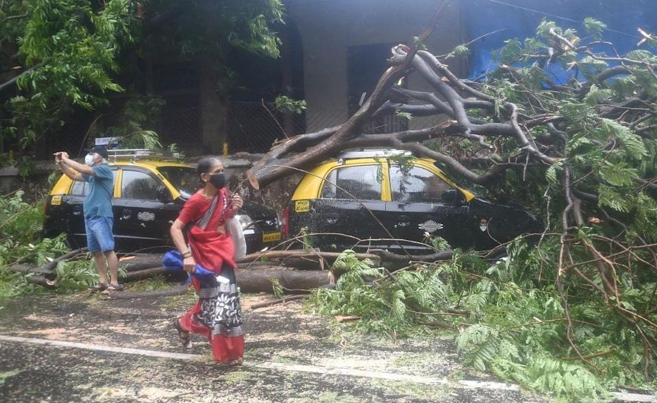 Trees fallen on parked cars due to strong winds triggered by cyclone Tauktae, in Mumbai on Monday.