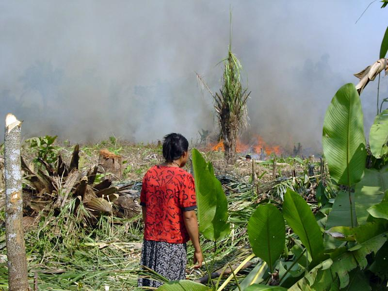 A Tsimane man monitors a burning field, among a group of indigenous people with a traditional lifestyle deep in the Bolivian Amazon, and according to a new study released Friday March 17, 2017, they have some of the healthiest hearts on the planet, according to Dr. Randall Thompson, a cardiologist at St. Luke's Health System in Kansas City, Missouri, USA. Scientists say the new findings underline the significance of lowering the traditional risk factors for heart disease, and like the Tsimane people, we should be physically active and have a low fat, low sugar diet. (Michael Gurven/St. Luke's Health System Kansas City via AP)