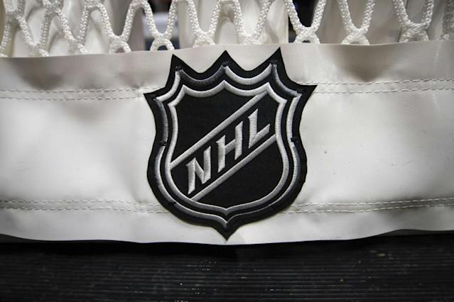 The NHL hopes to allow teams to resume small-scale training sessions next month (AFP Photo/Scott Taetsch)