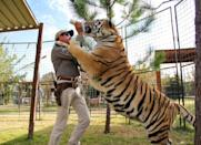 <p>After Tiger King debuted on Netflix in March, searches for tiger, leopard, and zebra prints more than tripled over the month of April.</p><p>Lyst also saw cat-obsessed shoppers searching for 'Kenzo Tiger' pieces, which spiked 200 per cent month-on-month, and Anine Bing's Tiger sweatshirt became one of the brand's most popular products.</p>