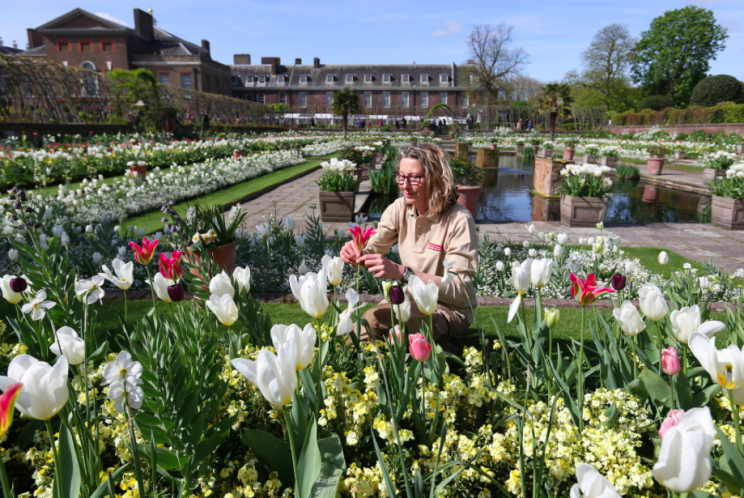 Some 12,000 flowers fill the gardens (PA)