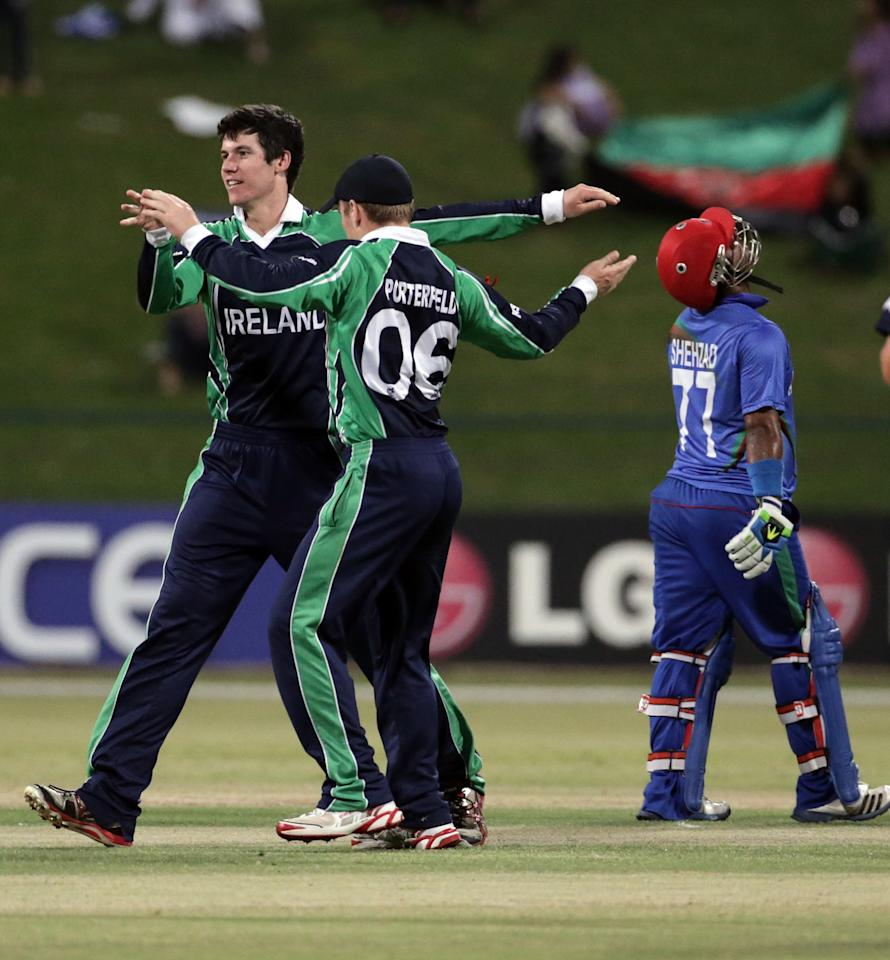 ABU DHABI - NOVEMBER 30: George Dockrell and William Porterfield of Ireland celebrate after bowling Nawroz Mangal of Afghanistan during the ICC World Twenty20 Qualifier Final between Ireland and Afghanistan at the Zayed Cricket Stadium on November 30, 2013 in Abu Dhabi, United Arab Emirates.  (Photo by Graham Crouch-IDI/IDI via Getty Images)
