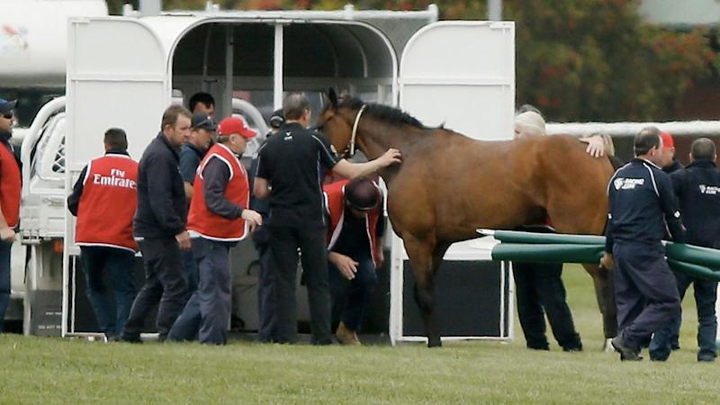 Regal Monarch was taken to Werribee equine for treatment. Getty