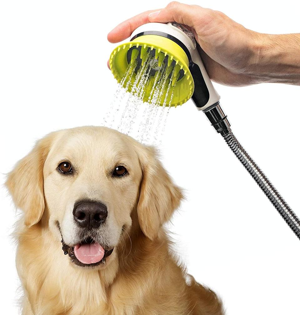 <p>Make bath time easier with the <span>Wondurdog Quality Dog Wash Kit</span> ($50) is attaches to your shower head and has a splash shield with rubber grooming teeth.</p>