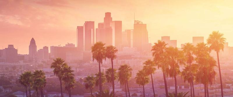 Los Angeles hot sunset view with palm tree and downtown in background. California