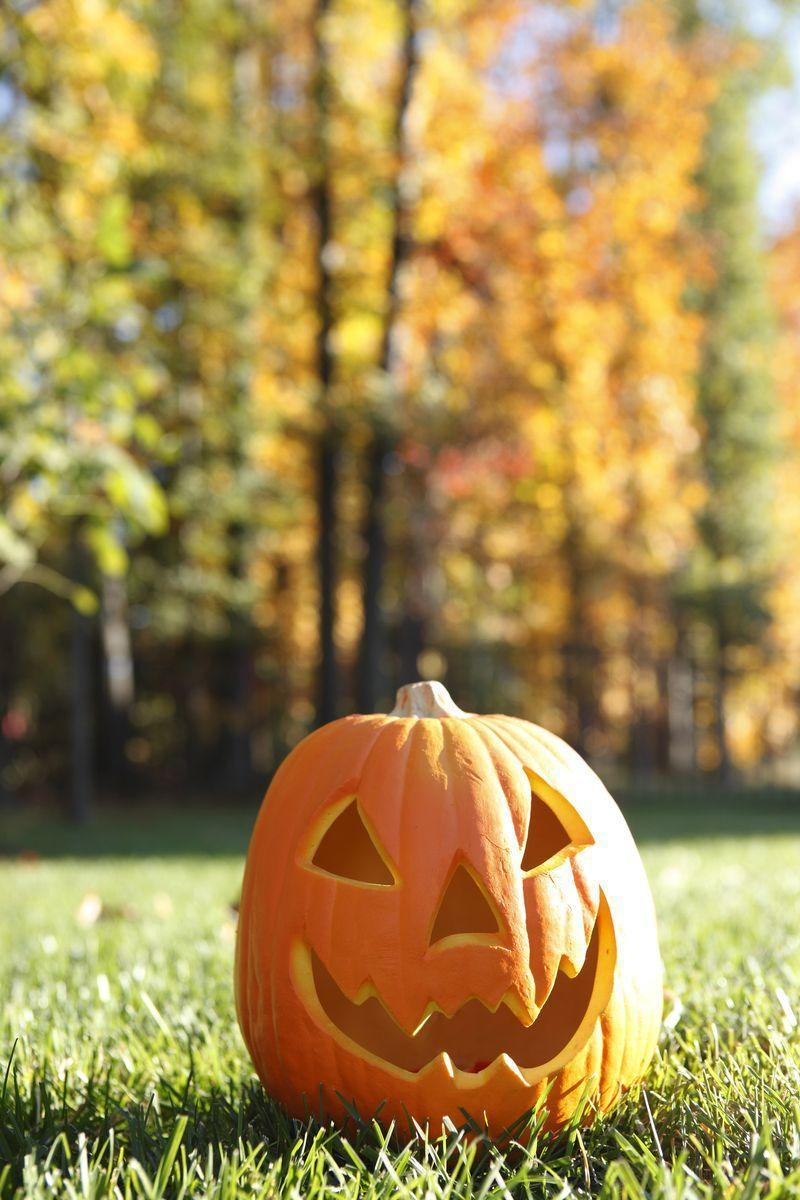 """<p>Answer: For those who don't believe the Stingy Jack folktale, let us present an alternative: the term Jack-o'-lantern comes from the idea of a night watchman, who would light the street lanterns every evening, <a href=""""https://www.cnn.com/2013/06/13/us/halloween-fast-facts/index.html"""" rel=""""nofollow noopener"""" target=""""_blank"""" data-ylk=""""slk:CNN noted"""" class=""""link rapid-noclick-resp""""><em>CNN </em>noted</a>. <br></p>"""