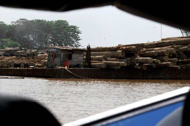Logs are stacked along the river on the outskirts of Pontianak city, in West Kalimantan province, Borneo
