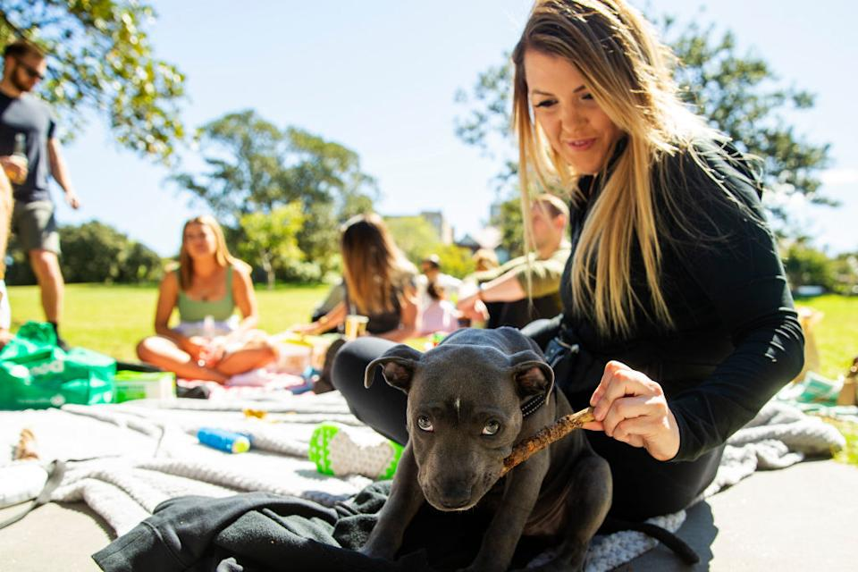 A woman is seen with a puppy during a picnic in Centennial Park in Sydney, Australia.