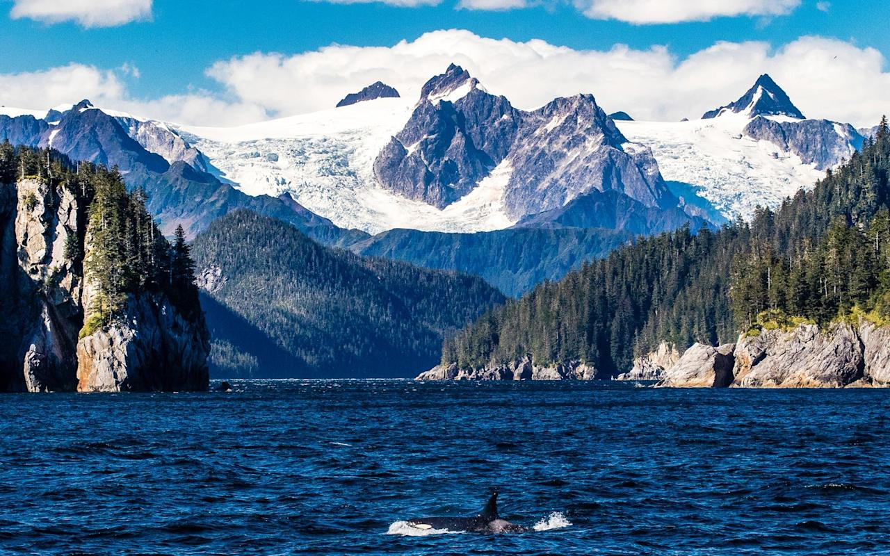 """<p>The first of several Alaskan parks on the list, <a href=""""https://www.nps.gov/kefj/index.htm"""">Kenai Fjords</a> is known for its <a href=""""https://www.travelandleisure.com/trip-ideas/nature-travel/how-see-alaska-melting-glaciers"""">incredible glacial landscape</a>. Compared to other parks in the state, Kenai Fjords is relatively accessible and can be explored by boat, flight, or foot. Even in the middle of summer, the couple felt like they were by themselves in the wilderness while exploring this park.</p>"""