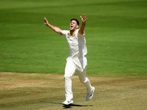 Mitchell Marsh celebrates after taking the wicket of Travis Head (Getty)