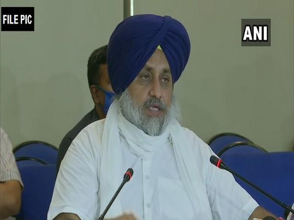 SAD president Sukhbir Singh Badal [File Photo]