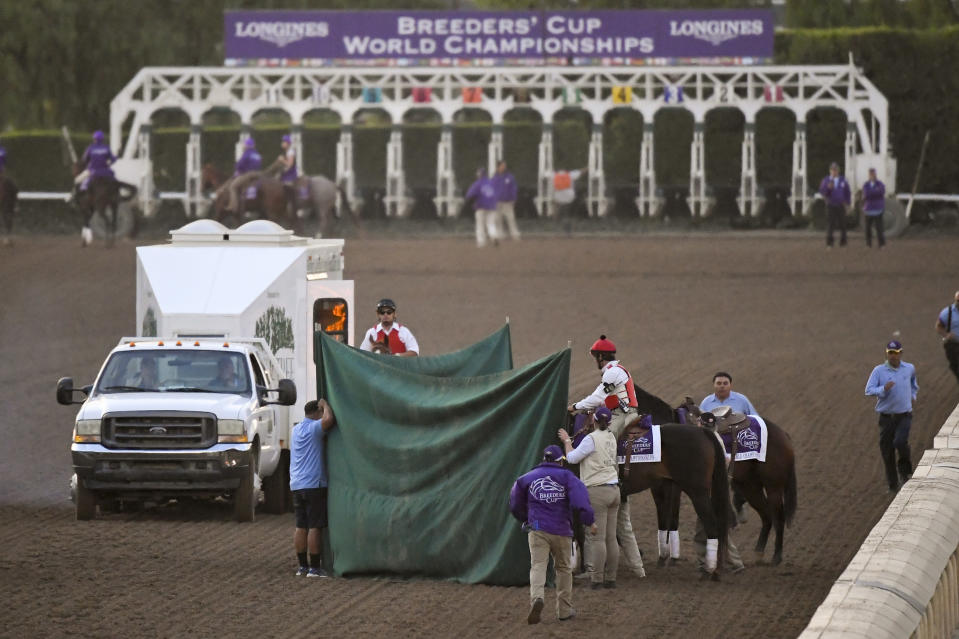 "Track workers treat Mongolian Groom after the Breeders' Cup Classic horse race at Santa Anita Park, Saturday, Nov. 2, 2019, in Arcadia, Calif. The jockey eased him up near the eighth pole in the stretch. The on-call vet says he has ""serious"" injury to leg. Was taken to equine hospital on the grounds. (AP Photo/Mark J. Terrill)"