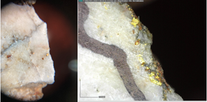 Examples of visible gold in quartz vein samples from the Kingsway Project.