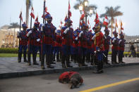 A dog accompanies the presidential honor guard outside the government palace and presidential residence, the House of Pizarro, on the Inauguration Day of President-elect Pedro Castillo in Lima, Peru, early Wednesday, July 28, 2021. (AP Photo/Guadalupe Pardo)
