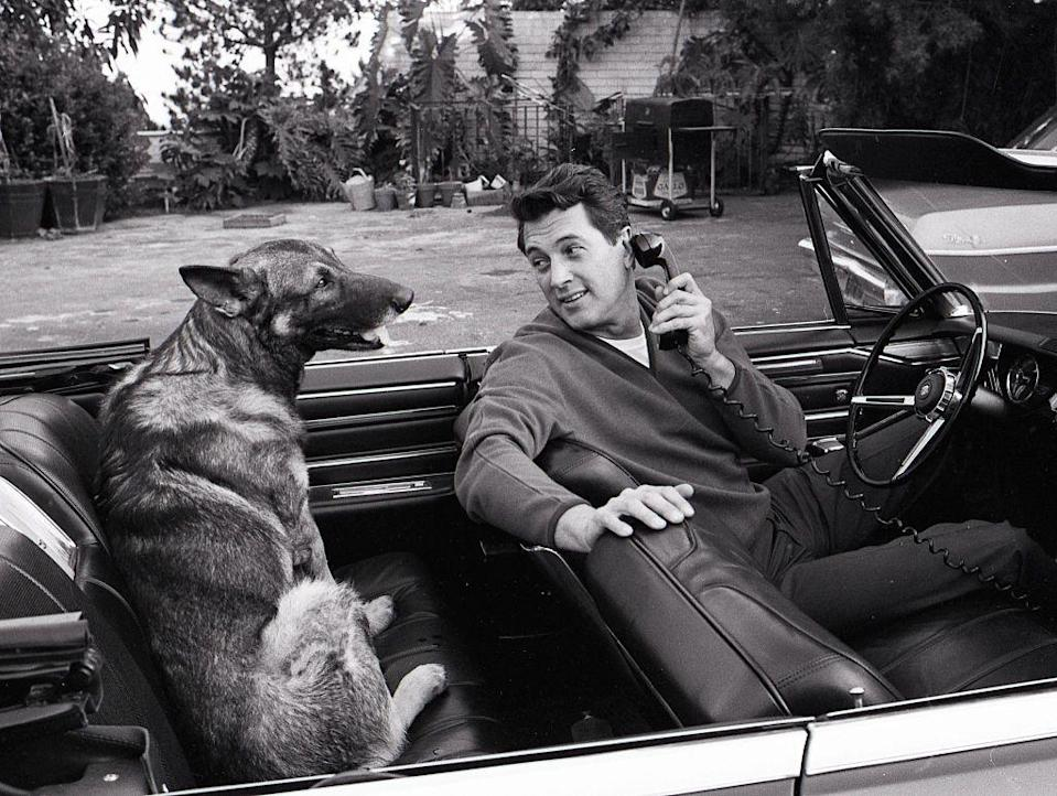 <p>Chatting on his car phone, Hudson was captured with his dog in his convertible, just outside his Hollywood villa. </p>