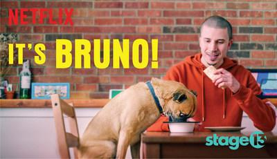 It's Bruno! and Healthy Spot's Pup-Up Gallery partnership