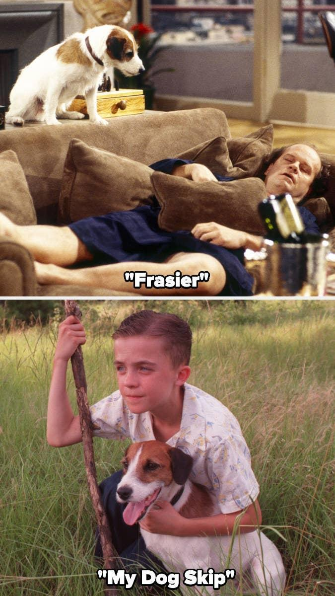 """Moose acting in """"Frasier"""" and """"My Dog Skip"""""""