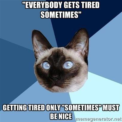 """""""everybody gets tired sometimes."""" getting tired only 'sometimes' must be nice"""