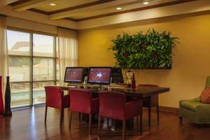 Charlotte Marriott SouthPark Installs Living Wall to Relax and Inspire Hotel Guests