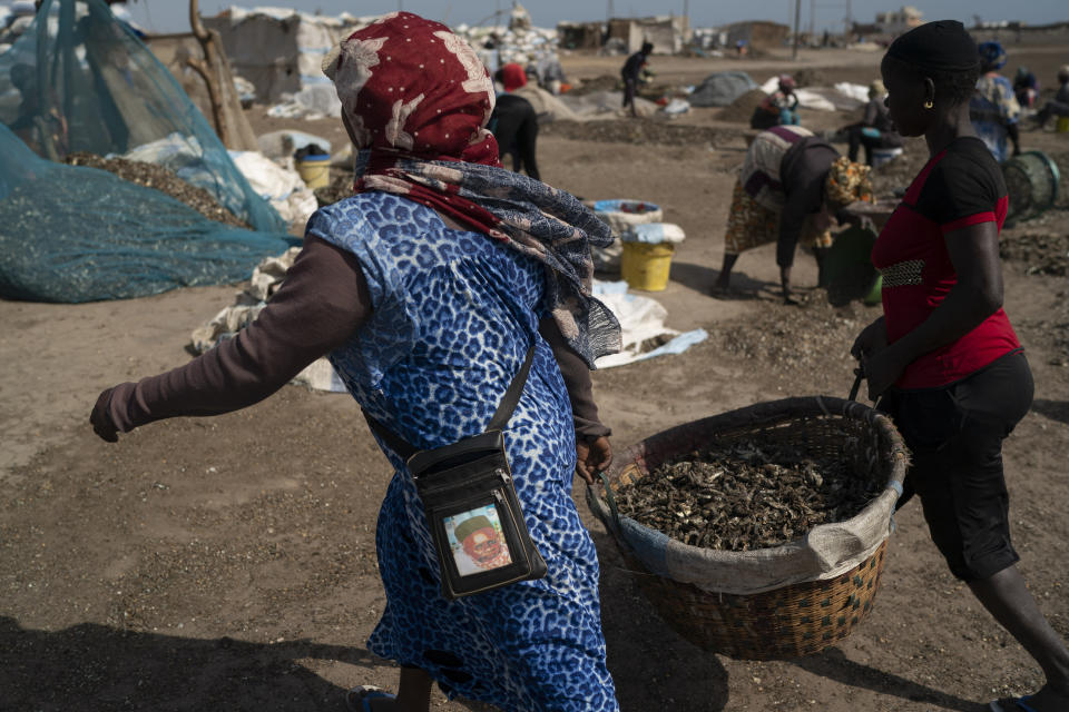 Women carry buckets filled with processed fish on Bargny beach, some 35 kilometers (22 miles) east of Dakar, Senegal, Sunday April 25, 2021. (AP Photo/Leo Correa)