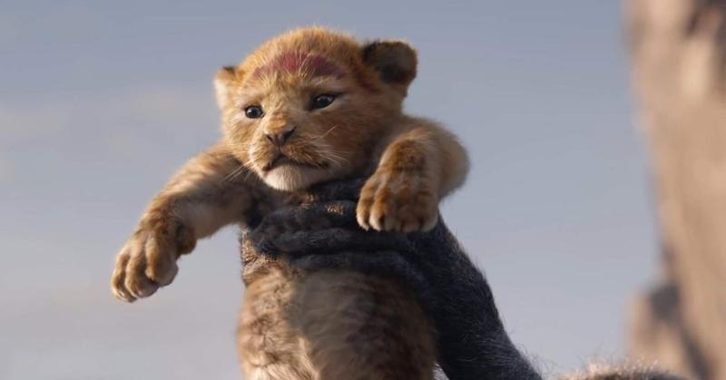 An adorable Simba in The Lion King